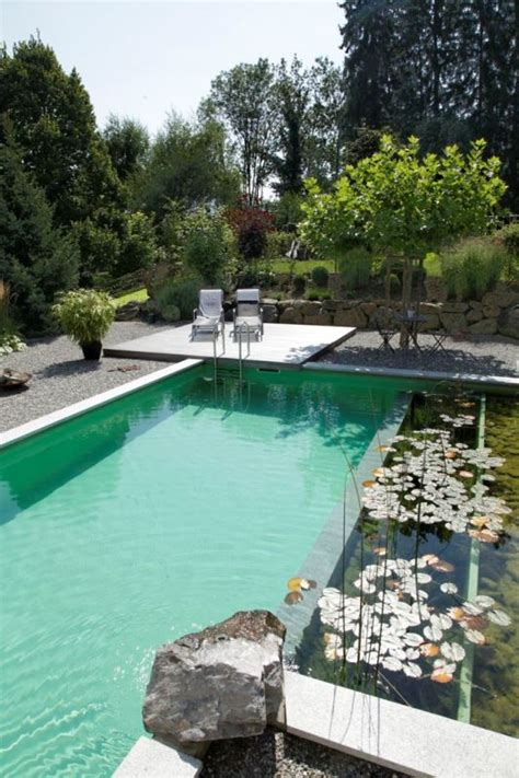 pros and cons of swimming pools design decoration
