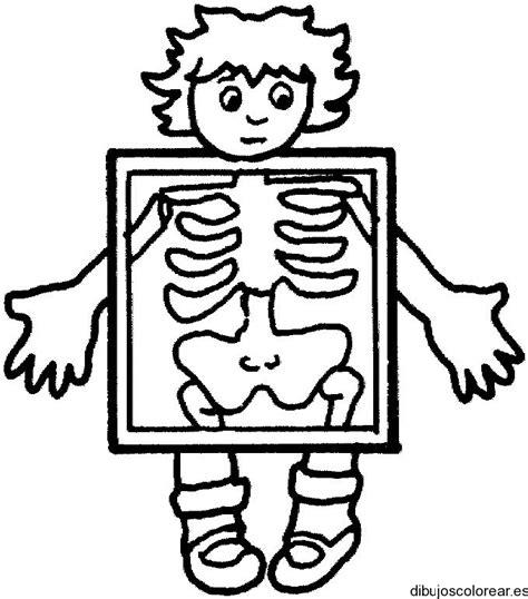 imagenes para colorear de rayos x dibujo de un ni 241 o en los rayos x