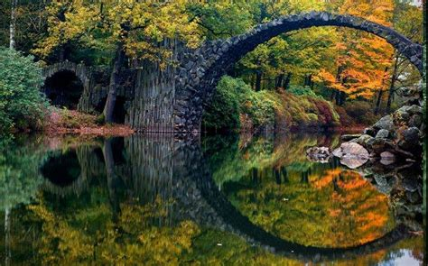 trees in germany nature landscape fall colorful bridge forest