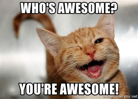 whose awesome you re awesome who s awesome you re awesome winking cat meme generator