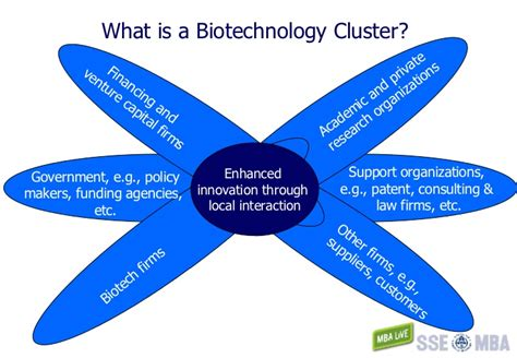 What Is Mba In Biotechnology by Uppsala Biotech Master Overview