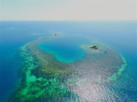 bird island belize private islands you can rent for the night business insider