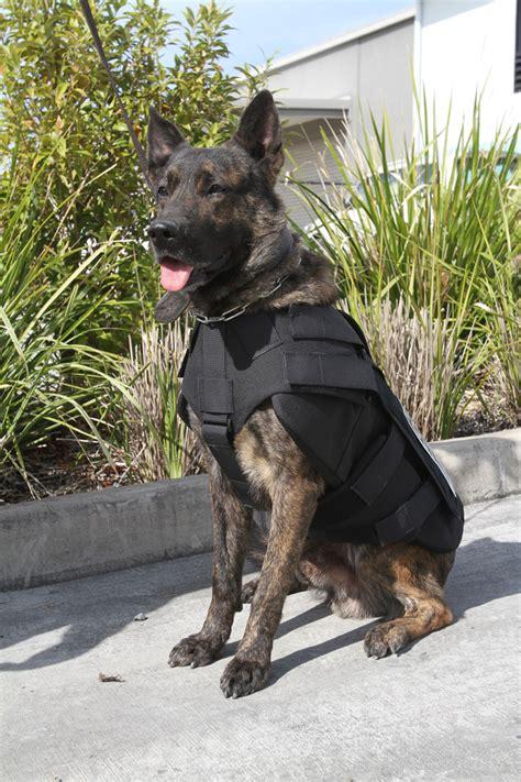 armour dogs enforcement armour leda epe