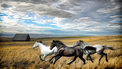Large Ranch Home Plans running horses painting photograph by steve mckinzie