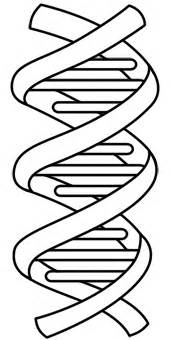dna coloring page how to draw dna