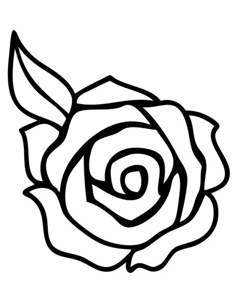 coloring sheet of rose coloring pages of roses coloring home