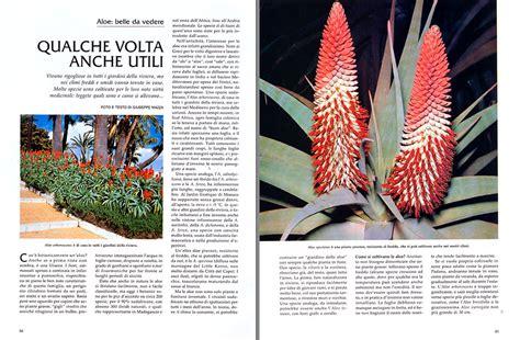 Pianta Ornamentale Con Foglie Rosse E Verdi by Dr Giuseppe Mazza Journalist Scientific Photographer