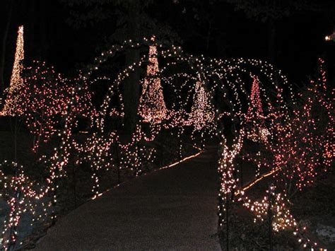 Arkansas Garvan Gardens Lights