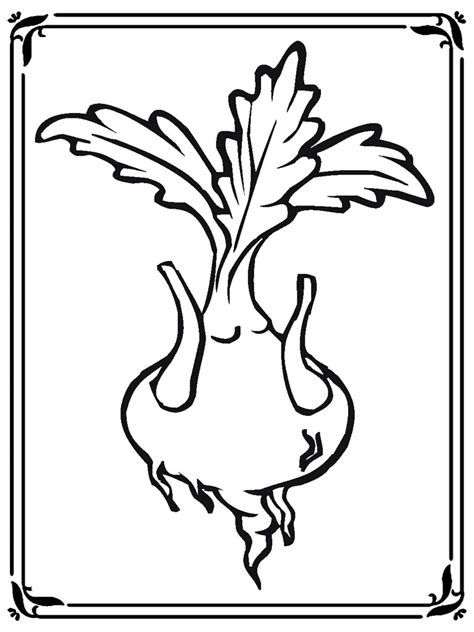 turnip coloring pages realistic coloring pages