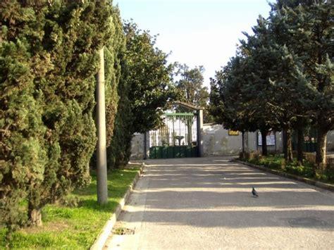 cimitero prima porta come trovare un defunto i 10 posti dove trovare erba a roma quando sei disperato