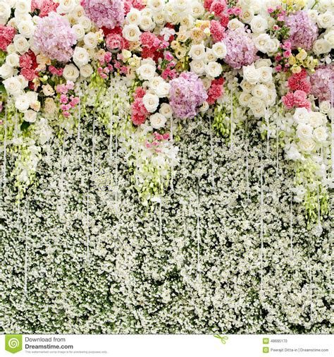 Wedding Backdrop Rental Singapore by Colorful Flowers With Green Wall For Wedding Backdrop