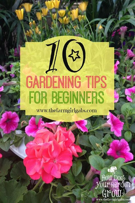 Gardening Ideas For Beginners 10 Simple Gardening Tips And Ideas For Beginners Is Almost Here It S Time To Plan Your