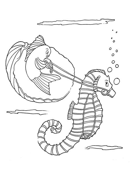 Printable Seahorse Coloring Coloring Pages Seahorse Coloring Page