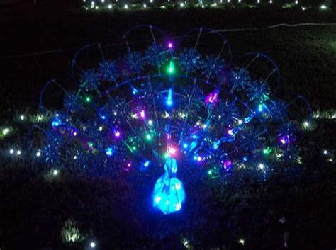 led lighted peacock outdoor christmas decoration peacock outdoor decor garden decoration ideas