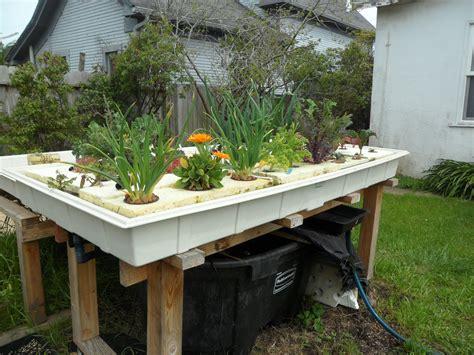 Aquaponics Easy Backyard System