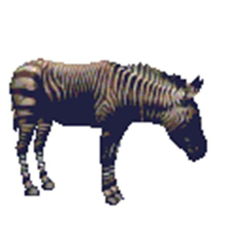 membuat gif running text animations a2z animated gifs of zebras