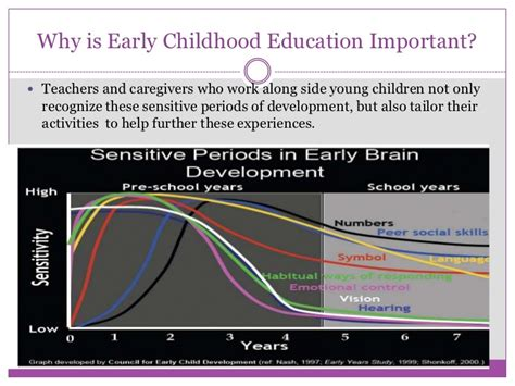 Importance Of Early Childhood Education Essay by Importance Of Early Childhood Education Essay Sludgeport101 Web Fc2
