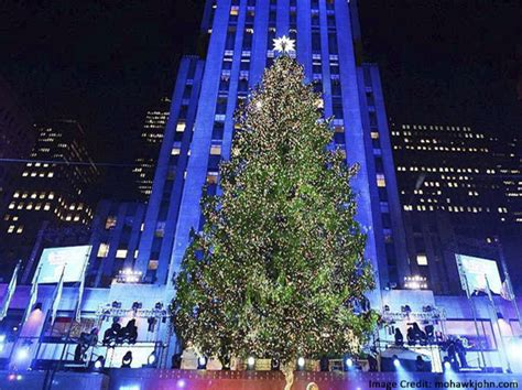 best christmas trees new york best template collection