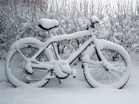 alimentazione bici alimentazione e allenamento bici quello che dovresti sapere