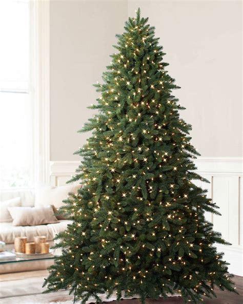 aspen fir balsam hill s best trees for large spaces balsam hill