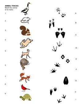 printable animal footprint matching game animal tracks matching sheet for pre k kindergarten 1st