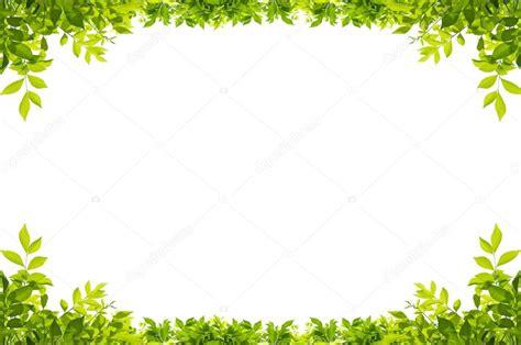 cornici fogli cornice foglie isolato su sfondo bianco foto stock