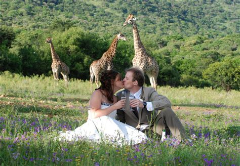 wedding venues around hartbeespoort dam leopard lodge in hartbeespoort west province