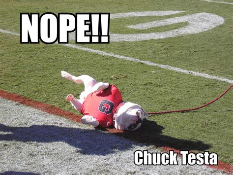 Nope Chuck Testa Meme - image 174578 nope chuck testa know your meme