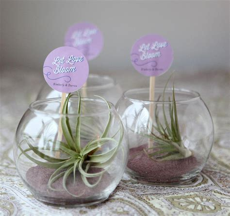 Handmade Terrarium - mini terrariums weddings ideas from evermine