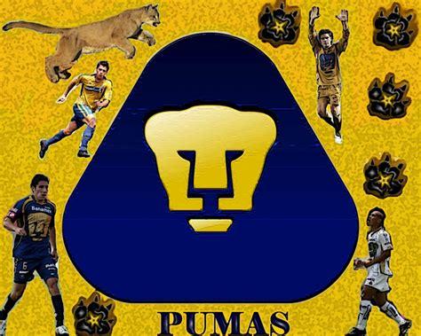 imagenes chidas de los pumas wallpaper unam free download wallpaper dawallpaperz
