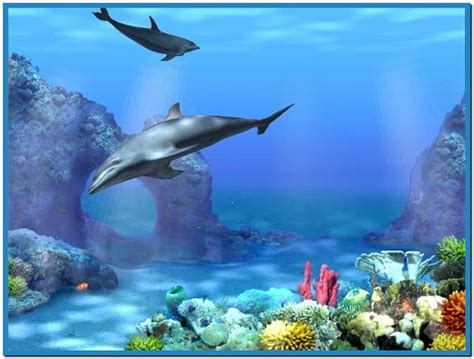 Live 3d dolphin screensaver   Download free