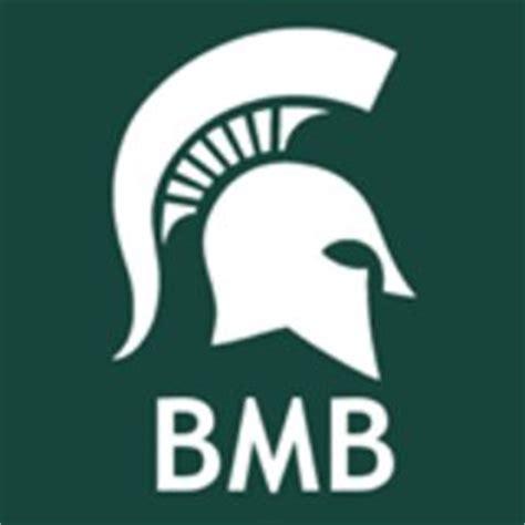 msu academic advising msu bmb advising bmbadvising