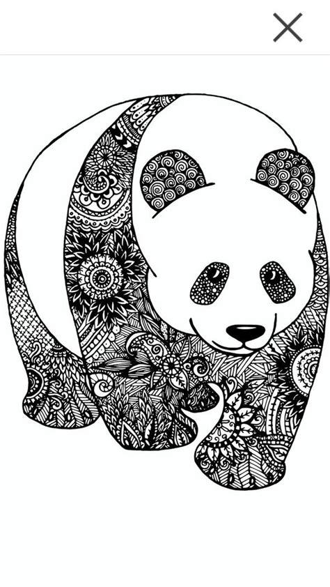 doodle panda panda zentangle pinteres