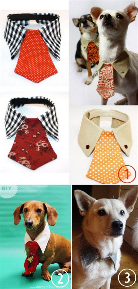 diy pet stuff diy or buy tie and collar for more pet diy gift
