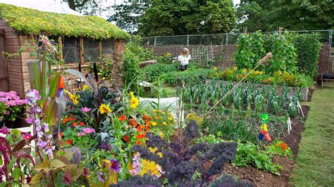 Growing Your Own Vegetable Garden Growing Your Own Gardening Advice And Tips From The Rhs
