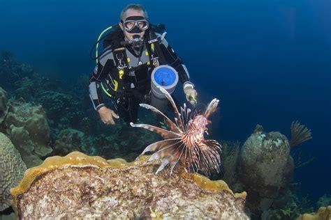 bonaire dive bonaire diving the and scuba diving