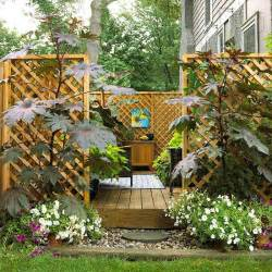 How To Create Privacy On A Patio by Dr Dan S Garden Tips Landscaping For Privacy
