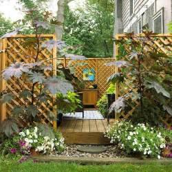 dr dan s garden tips landscaping for privacy