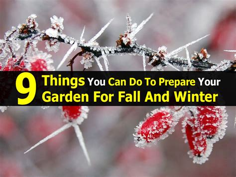 how to prepare your garden for winter today com 9 things you can do to prepare your garden for fall and winter