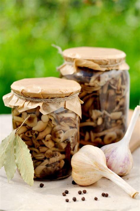 Come Cucinare I Funghi Chiodini by Funghi Chiodini Sotto Sale Donnad