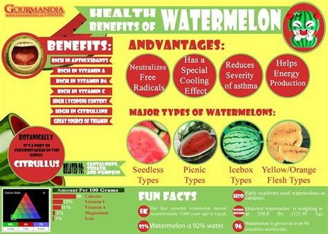 Melon Detox Cleanse by Why Watermelon Juice Every Day Is For You