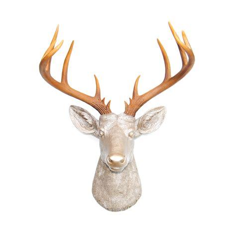 deer head wall l 14 point deer head wall mount white near and deer