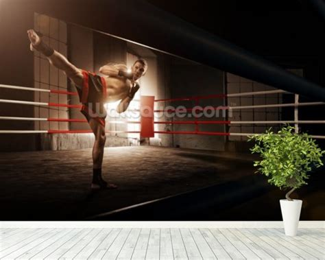 boxing wallpaper for bedrooms boxing wallpaper for walls many hd wallpaper