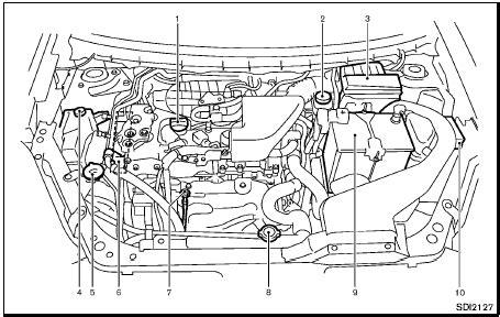 les paul coil tap wiring diagram car repair manuals and