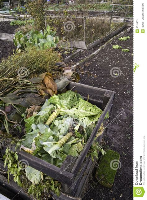 Compost Stock Photos Image 8619403 Is Manure For Vegetable Gardens