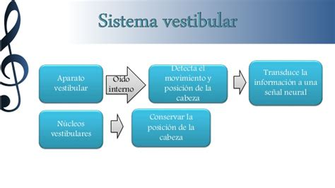 Audicion Y Equilibrio by Audicion Y Equilibrio