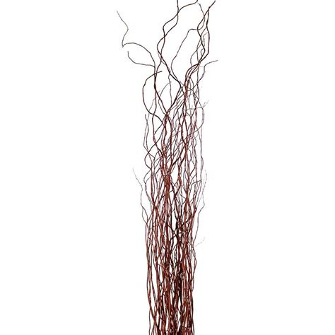 decorative branches brown curly willow branches