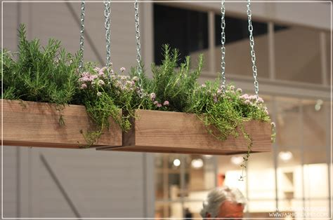 Piante In Cucina by Beautiful Piante In Cucina Images Home Interior Ideas