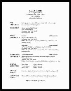 20 chronological resume exles document