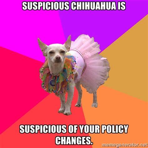 Suspicious Meme - suspicious chihuahua memes image memes at relatably com